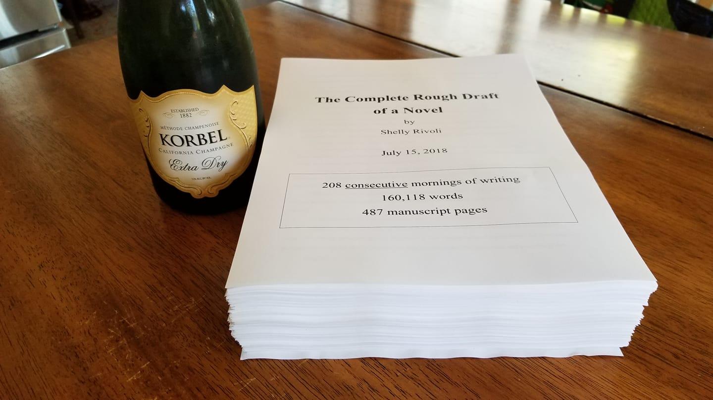 first draft novel by Shelly Rivoli