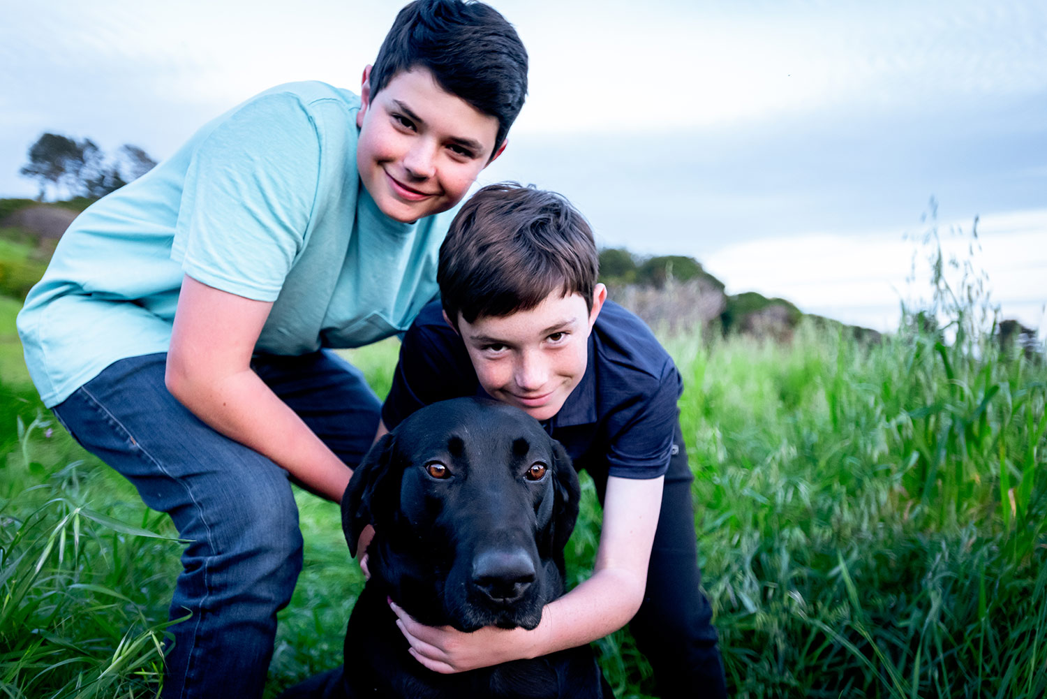 east bay family photography of boys with dog